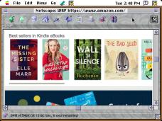 Amazon in Netscape